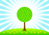 Spring tree on green meadow — Stock Vector