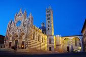 Katedra w sienie — Zdjęcie stockowe