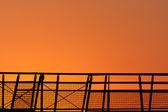 Bright sunrise — Stock Photo