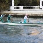 Team of senior rowers, Venice. — Stock Photo