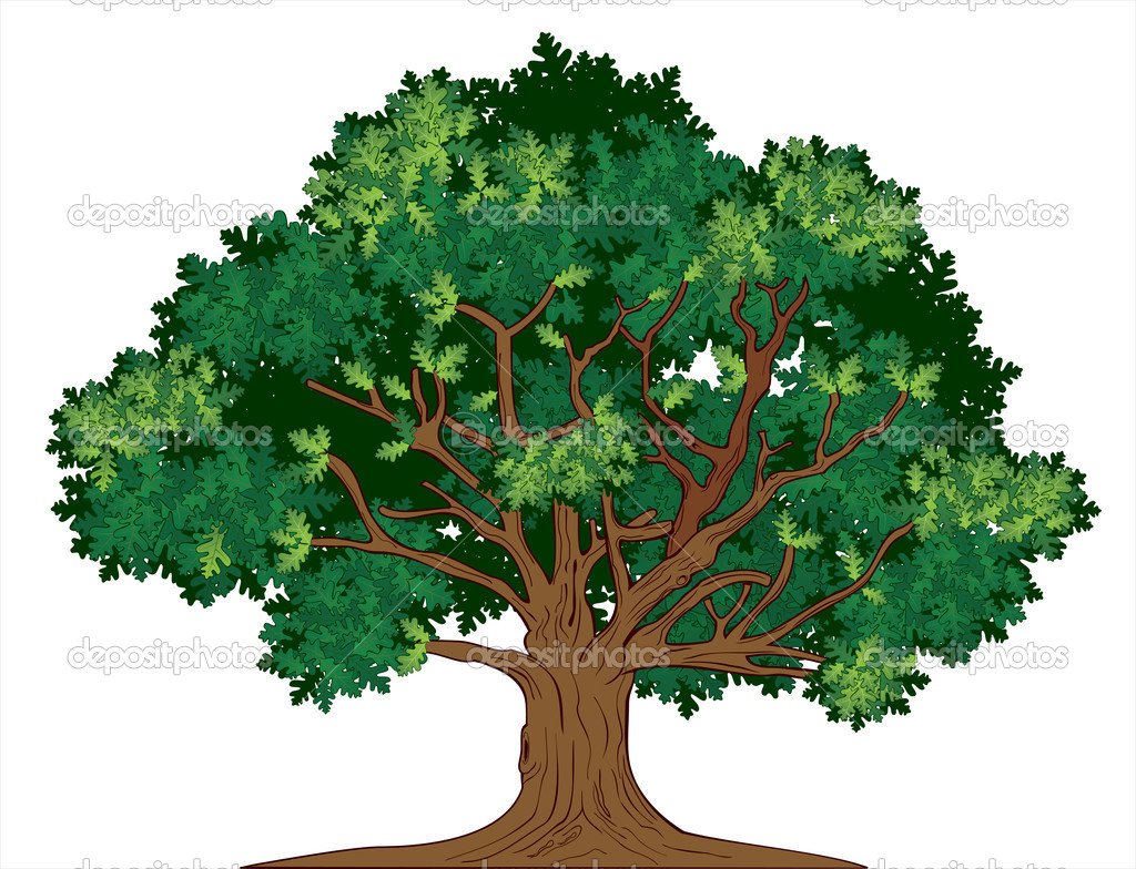 Vector Illustration Tree: Stock Vector © Gitan1001 #9812832