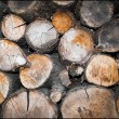 Stacked firewood - Stock Photo