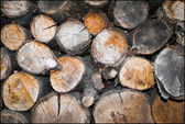 Stacked firewood — Stock Photo