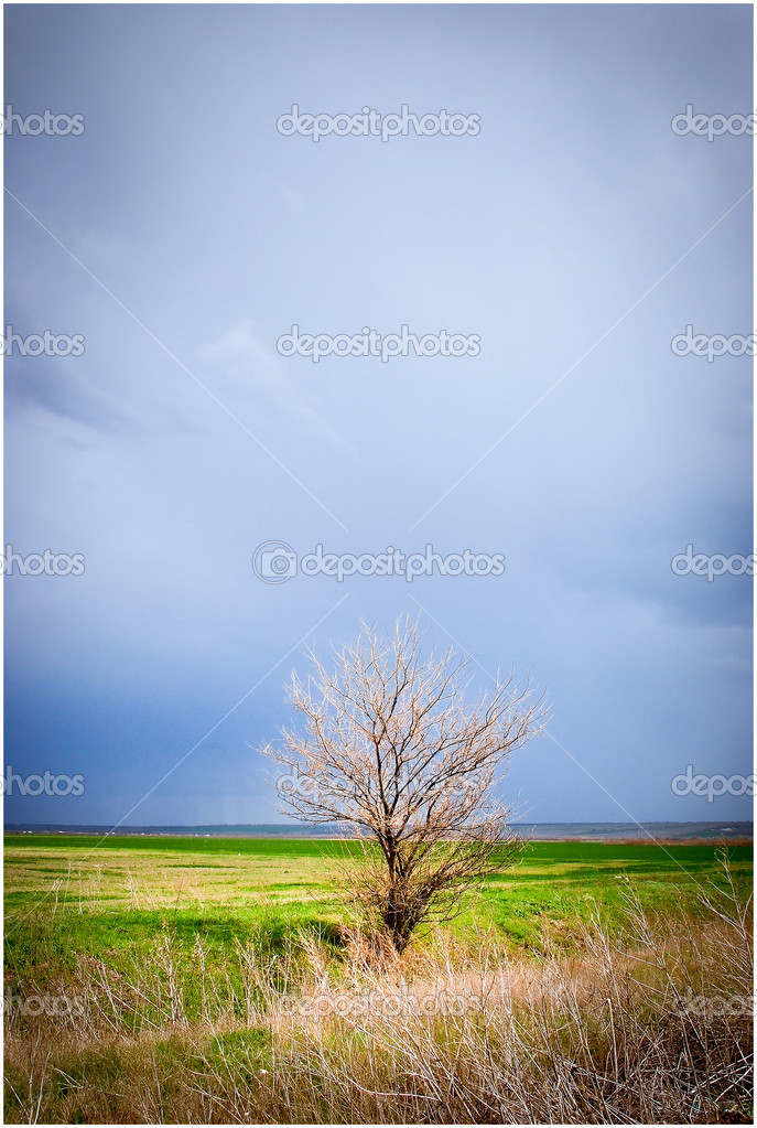 Precipitation in the village — Stock Photo #10193607