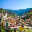 Riomaggiore - Stock Photo