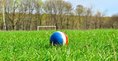 Rubber ball on the green grass — Stock Photo