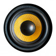 Stock Photo: High resolution yellow kevlar woofer