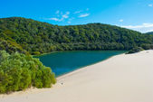 Fraser Island, Queensland, Australia — Stock Photo