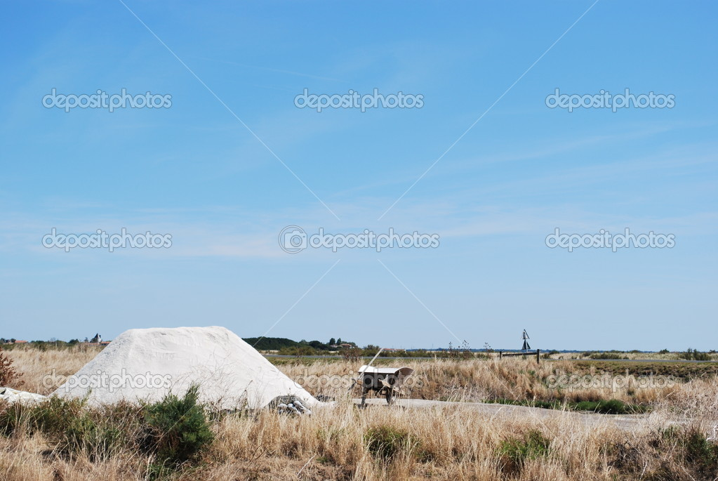 Salt fields in Ile de Re, La Rochelle, France — Stock Photo #10652273