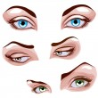 Royalty-Free Stock Vector Image: Female eyes set