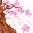 Sakura tree — Stock Vector