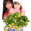 2 sisters holding parsley — Stock Photo