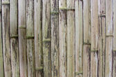 Background - old bamboo panel — Stock Photo