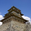Takashima castle main keep — Stock Photo