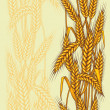 Abstract textured wheat field. Seamless pattern. Vector. - Imagen vectorial