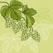 Hop Ornament On Green Grunge Background, Vector Illustration — 图库矢量图片