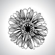 Vector hand draw flowers set isolated on white. — ベクター素材ストック