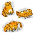Collection of cute red cat vector set. — Stock Vector