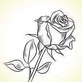 孤立的黑玫瑰 — 图库矢量图片