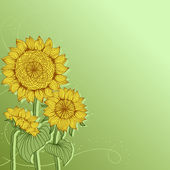 Yellow sunflowers. Abstract floral background. — Stock Vector