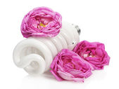 Fluorescent light bulb with roses — Stock Photo