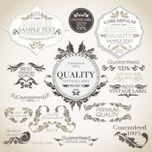 Vector set: calligraphic design elements and page decoration, Pr — Stock Vector