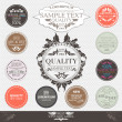 Set of Premium Quality and Guarantee Labels in retro and  vintag — Stock Vector