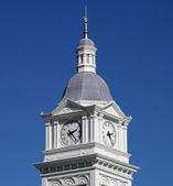 Historic Clock Tower — Stock Photo