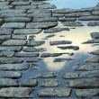 Cobblestone street Savannah — Stock Photo