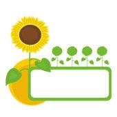 Sunflowers frame. — Stock Vector