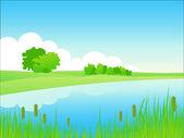 Summer riverside landscape. — Stock Vector