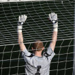 Soccer goalkeeper — Stock Photo #9860090