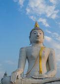 Obří socha buddhy — Stock fotografie