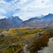 Stock Photo: Fantastic view on way to Muktinath