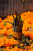 Incense in new year festival,nepal — Stock Photo