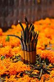 Incense in new year festival,nepal — Stock fotografie