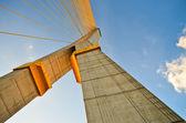 Puente de rama ocho — Foto de Stock