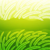 Background with green spikelets — Stock Vector
