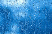 Rainy Window — Stock Photo