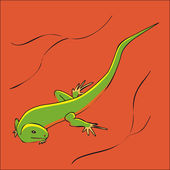 Lizard. Vector illustration — Stock Vector