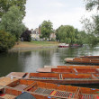 Punts in river Cam — Stockfoto