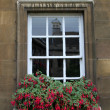 Window of residential house — Photo
