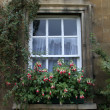 Photo: Window of residential house