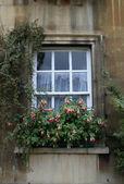 Janela de uma casa residencial — Foto Stock