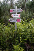 Vista de dois sinais direcionais de madeira em um pólo — Foto Stock