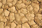 Gebarsten grond — Stockfoto
