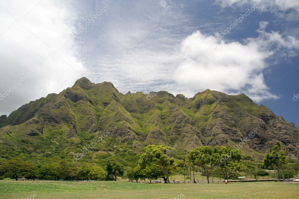 Beautiful green mountain in Hawaii — Stock Photo #9785522