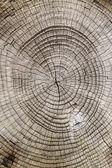 Corte de madeira — Foto Stock