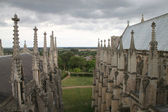 Ely Cathedral, U.K. — Stock Photo