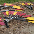 Stock Photo: Yellow and red paddles